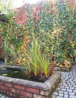 Cobbles laid, pond built in Harrow